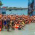 Delfines en Ruta de El Delfín Foto 2